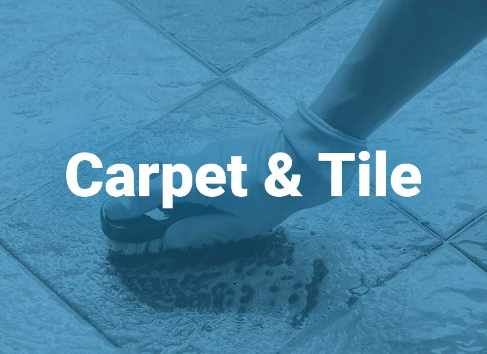 Carpet and tile surface cleaning of LaGrange KY housecleaning all of Louisville Kentucky, Oldham County and surrounding areas